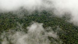 NASA Study Shows the Amazon Makes Its Own Rainy Season