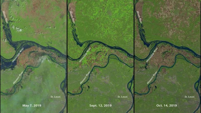 NASA USGS Landsat 8 St Louis Farms