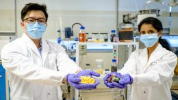 NTU Scientists Fruit Peel Waste