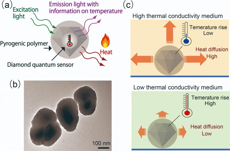Nanodiamond Quantum Sensor Coated With a Pyrogenic Polymer