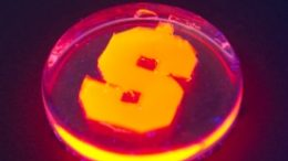 Nanorods created with firefly enzymes glow orange