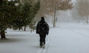 New Discovery Helps Explain Winter Weight Gain