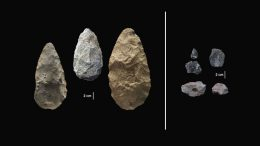 New Discovery Pushes Back Human Evolutionary Timeline