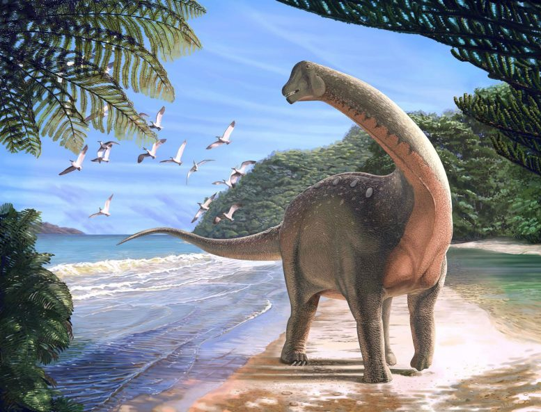 New Egyptian Dinosaur Discovered Mansourasaurus