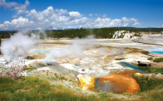 origins of life on earth The 2018 gordon research conference on origins of life will be held in  the  origin of life by concentrating phosphate and magnesium on prebiotic earth.