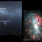 New Gamma Ray Sources Discovered in Large Magellanic Cloud