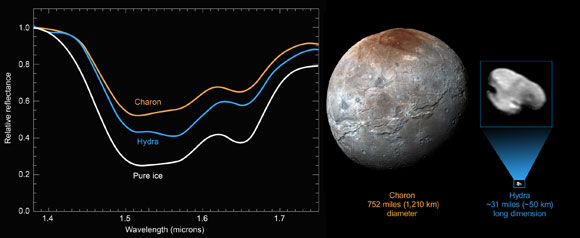 New Horizons Reveals a Distinct Water-Ice Signature on Hydra
