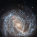 New Hubble Image Views Spiral Galaxy NGC 2441 and Supernova SN1995E