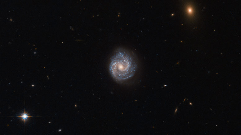New Hubble Image of 2XMM J143450.5+033843