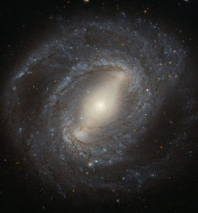 New Hubble Image of NGC 4394