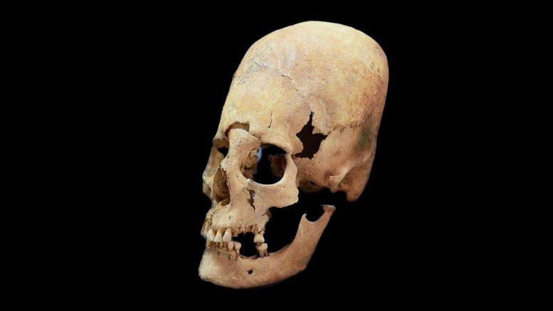 New Insights Into the Origin of Elongated Heads