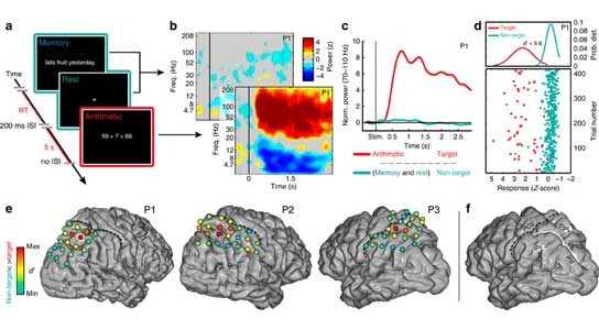 New Method of Recording Brain Activity May Lead to Mind Reading Devices