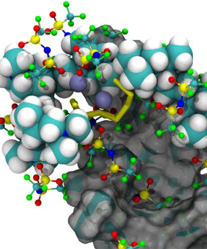New Polymer Raises the Bar for Lithium-Sulfur Batteries