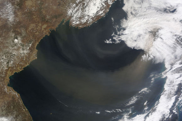 New Research Shows Phytoplankton Are Extremely Sensitive to Changing Levels of Desert Dust