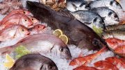 New Research Tracks Mercury Sources in Seafood