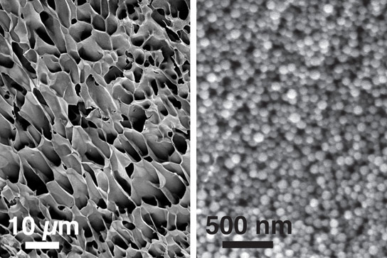New Self-healing Nanogel