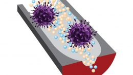 New Sensor Can Distinguish Infectious Viruses From Noninfectious