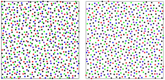 New State of Matter Known as Disordered Hyperuniformity Discovered in Chicken Eyes