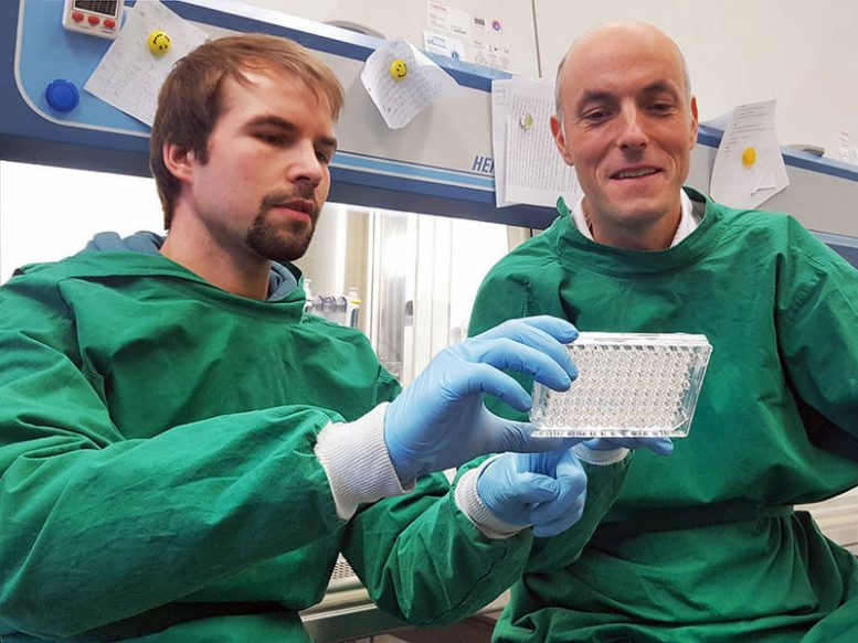 New Strategy Against Life-Threatening Tuberculosis Infections