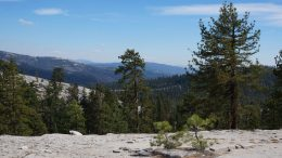 New Study Reveals Surprising Role of Dust in Mountain Ecosystems