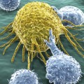 New Study Reveals Two-Step Strategy for Weakening Cancer