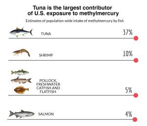 New Study Tracks Mercury Sources in Seafood