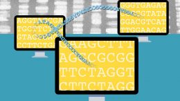 New System Could Enable Crowdsourced Genomics