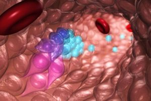 New Technique Raises Possibility of Making all Types of Blood Cells to Treat Disease