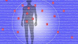 New Test Identifies Those at Risk for Five Deadly Diseases