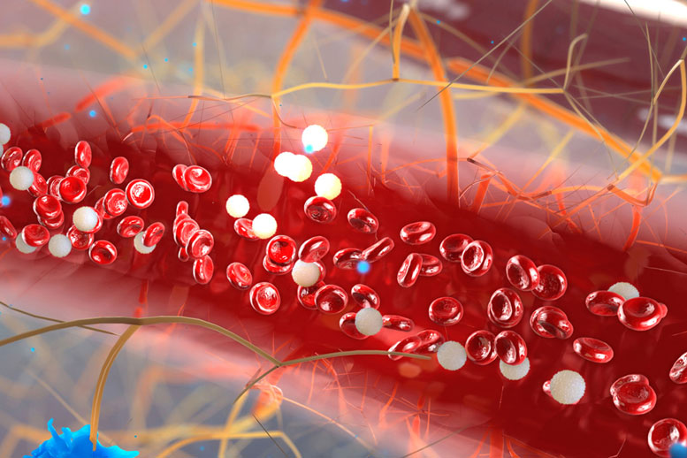 Newly Developed Microfluidic Device Isolates Plasma Cells from Blood