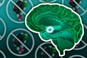 Newly Identified Pathway Could Prevent PTSD
