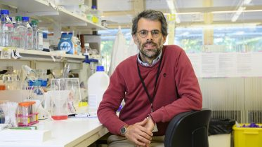 Low-Cost Technology Developed for Finding New COVID Variants