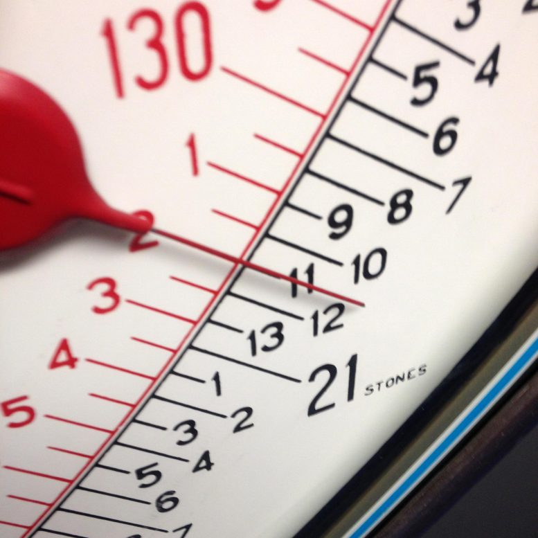 Obesity Body Weight Scale
