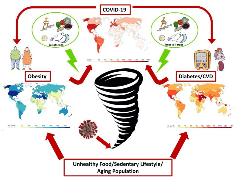 Obesity, Impaired Metabolic Health and COVID 19