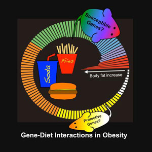Obesity_and_Genetics