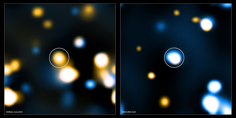 Obscured Active Galactic Nuclei Triggered in Compact Star-Forming Galaxies