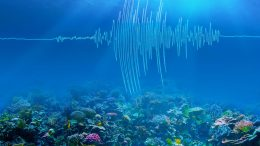 Ocean Earthquakes