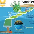 Offshore Membrane Enclosures for Growing Algae