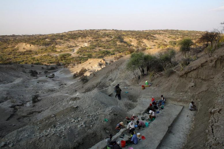 Olduvai Gorge Archaeological Site in Tanzania