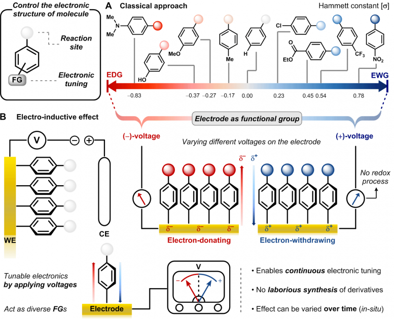 One Electrode Fits All Functional Groups