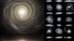 Images of the Optical Light Emitted by the Stars of 16 Galaxies from the TNG50 Simulation