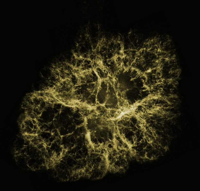 Optical View of Crab Nebula