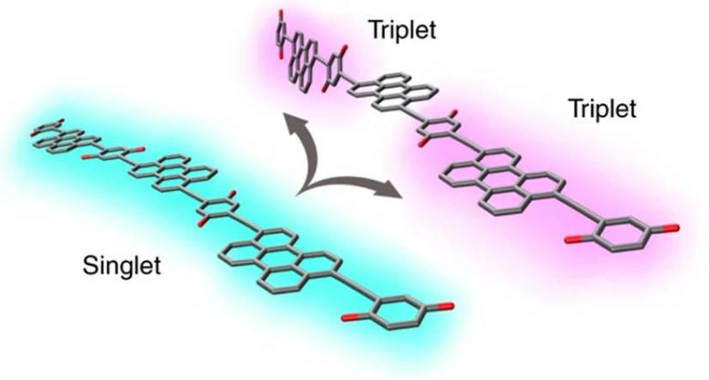 Organic Molecules Isolate Triplet Excitons