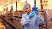 Organic Record Solar Module at the Solar Factory of the Future