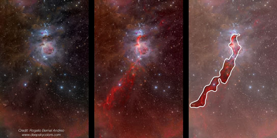 Orion constellation in the optical and the infrared