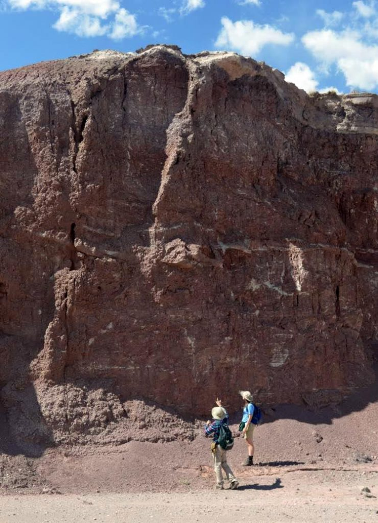 Outcrop for Fossils at Petrified Forest National Park