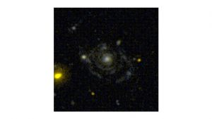 Outflows in the Narrow Line Region of Bright Seyfert Galaxies