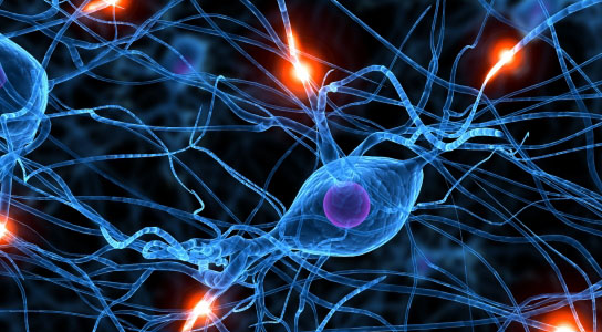 PKR Inhibitor May Improve Learning and Memory