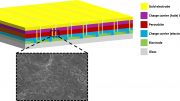 Perovskite Solar Module and Surface of Active Layer