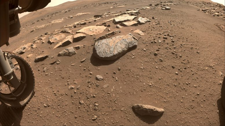 Perseverance Team Selects a New Rock to Abrade